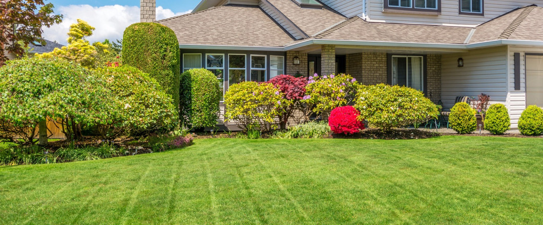 Insect Control & Landscaping   Concord, Highland Creek, Matthews ...